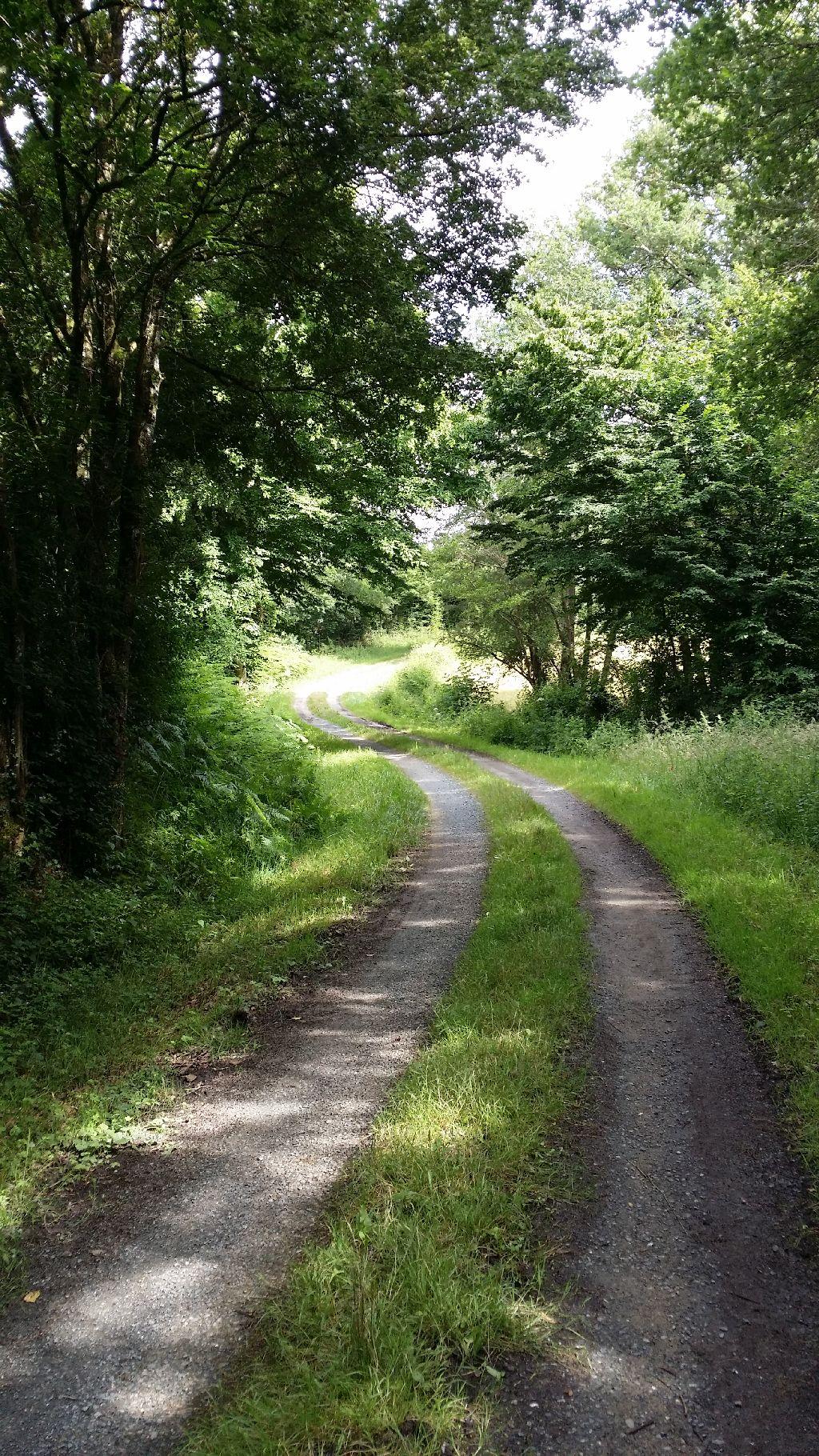 Chemin typique
