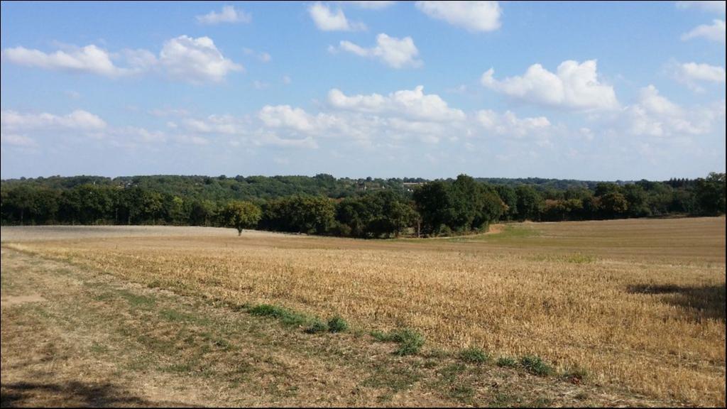 Le moulin de Ribes