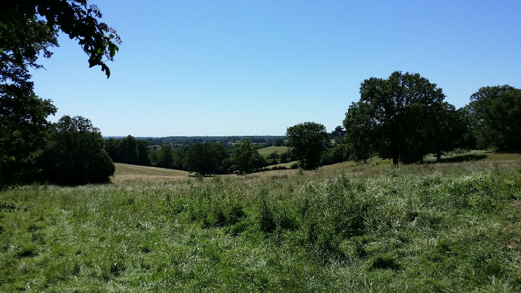 Panorama les granges 1