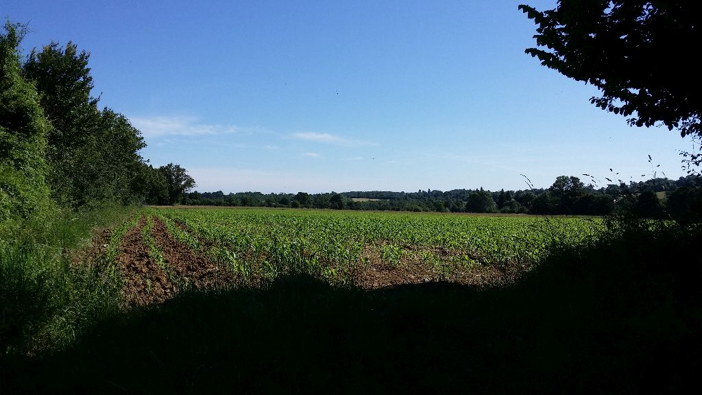 Panorama GR 654