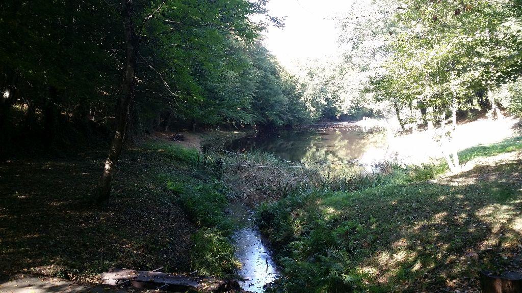 Ruisseau de lazais etang